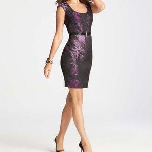 Ann Taylor Purple Jacquard Floral Dress